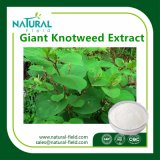 Giant Knotweed Extract Plant Extract Resveratrol Powder by HPLC