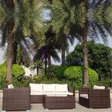 PE Rattan Outdoor Furniture Sofa Set
