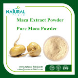 with 12 Years Experience Natural Factory Supply Maca Powder 4: 1