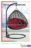 High Quality Power Coating Iron Frame Rattan Wicker Swing Chair (TGDL-008)