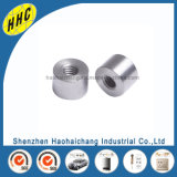Stainless Steel 316 Bolt and Nut