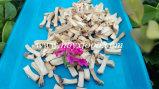 Ad Mushroom Flake Dried Mushroom Granules with SGS Certificate