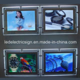 The New Trade Show Thin Acrylic for LED Light Box