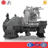 Cogeneration Steam Turbine with Moving Vane