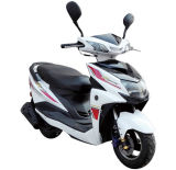 New Classic 49cc Two Wheel Woman Motor Scooter (SY50T-10)