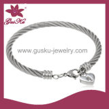 Fashion Stainless Steel Bangle (2015 Stbl-070)