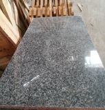 Chinese Cheap Polished G654 Grey Granite on Promotion