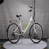 Light Weight Electric Bike (RSEB-303)