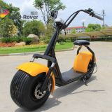 Citycoco Dirt Bike 2 Wheel Electric Motorcycle Fat Tire Electric Bike