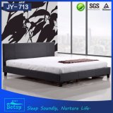 New Fashion Iron Bed Furniture Durable and Comfortable