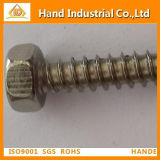 Ss DIN7976 Hex Head Tapping Screw