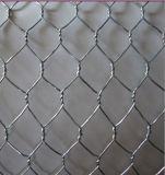 Hot Sale! ! ! Professional Factory Manufacture Galvanized Hexagonal Chicken Wire Netting