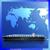 Freight Services Suitable for International Sea-Freight