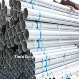 Best Price of Galvanized Steel Pipe (Garde Q235)