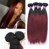 8A Brazilian Ombre Virgin Hair Straight Meches Bresilienne Straight Hair