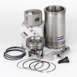 Engine Parts for Volvo Excavators (EC210, EC290, EC460, EC700)