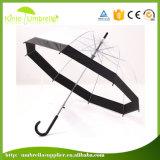 Automatic Open Promotional Sun Rain Straight Transparent Umbrellas