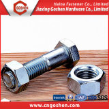 Stainless Steel and Steel Bolt and Nut
