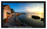 """128"""" 2.35: 1 Home Cinema Fixed Projection Screens"""