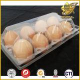 Rigid PVC Film for Egg Packing