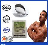 Safety Prohoromone Powder GMP Standard Ecdysone High Quality Powder