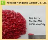 Wolfberry, The Secret of Longevity--280grains/50g