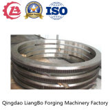 Large Gear for Slush Machinery Gear Milling Part in China