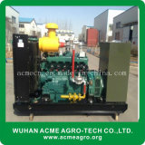 Diesel Natural Gas Biogas Syngas Types of Electric Power Generator Set