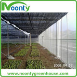 Thermal Screen for Energy Saving Cloth Curtain for Greenhouse