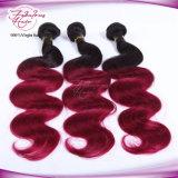 100% Virgin Brazilian Ombre Hair Weft 1b/99j Color Body Wave Hair