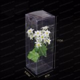 PVC Plastic Gift Case Packaging Package Transparent Box