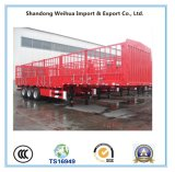 40t Livestock Fence Semi Trailer with Fuwa Brand Axle