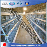 Automatic Layer Chicken Cage Equipment (A frame)