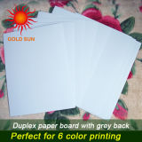 Duplex Board Paper with Gray Back for Making Boxes (DP-003)