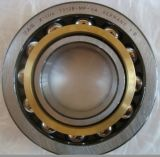 Wholesale Metric Ball Bearing SKF 7319 Angular Contact Ball Bearing