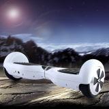 Double Wheel Electric Standing Scooter (DG-Smart)