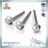 OEM Parts Casting Product Stainless Steel Bolt and Nut