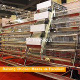 Types of poultry battery cage system