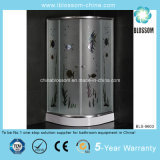 Best Selling Colorful Glass Shower Room (BLS-9603)