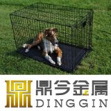High Quality Metal Pet Product