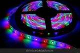 Double PCB 12/24V LED Strip Light LED Light