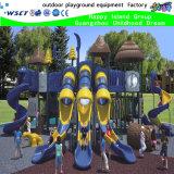 New Design Playground Equipment with TUV (HK-50002)