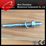 Stainless Steel Wedge Anchor or Through Bolt with Nut and Washer