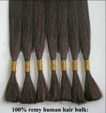 High Quality Remy Hair Bulk (WHH-STB--004)