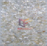 Natural Color High Quality Shell Mosaic Tile (CFP118)