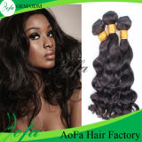 Virgin Brazilian Human Hair Loose Wave Human Hair Wigs