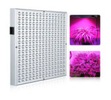 2017 New Style LED Grow/Plant Lights/Lamps
