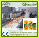 Complete Mandarin Orange in Syrup Production Line