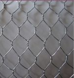 Galvanized Chicken Wire Mesh/Hexagonal Wire Netting Yaqi