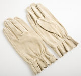 Lady Goatskin Suede Leather Fashion Driving Gloves (YKY5097-2)